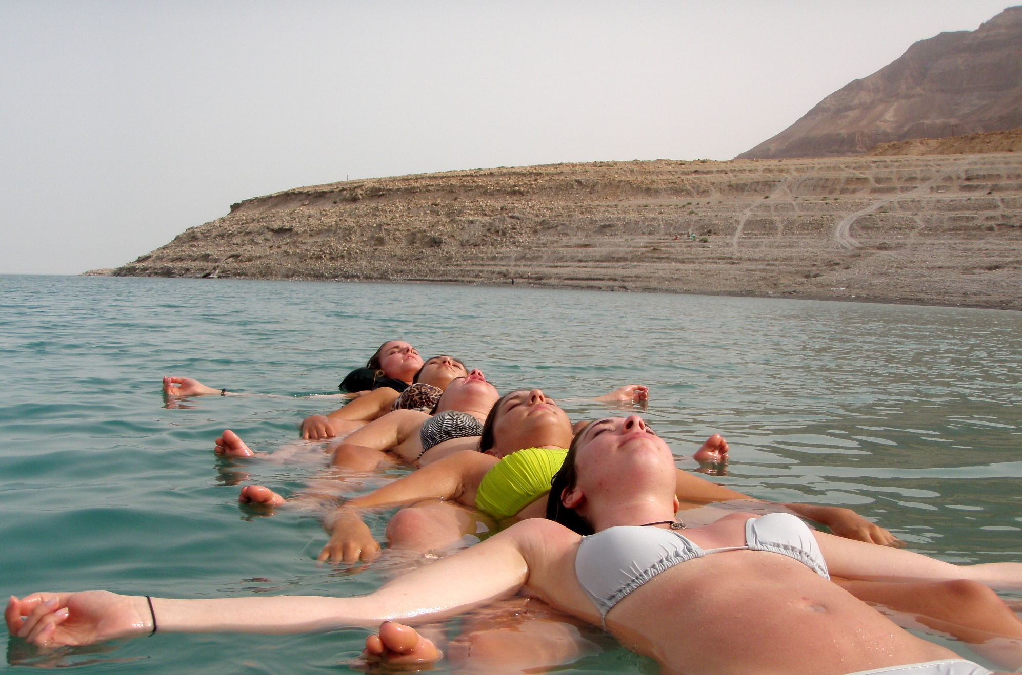 Dead Sea permaculcher prj.