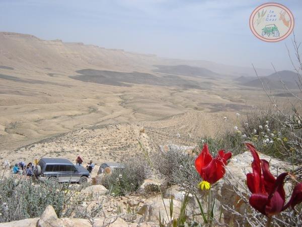 Ma'ale Arod Mitzpe Ramon jeep tours.