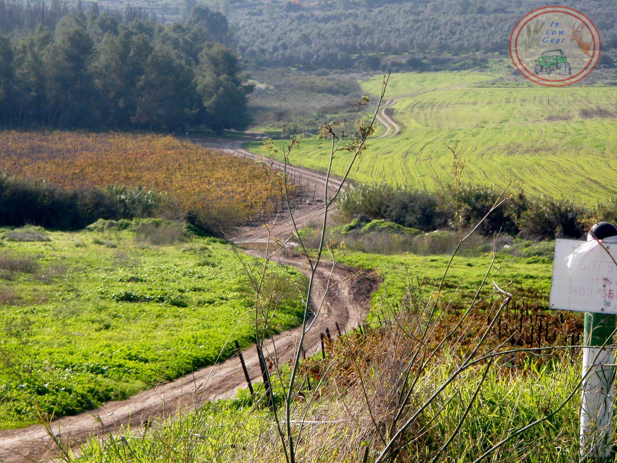 Latrun, Ayalon valley. לטרון עמק איילון