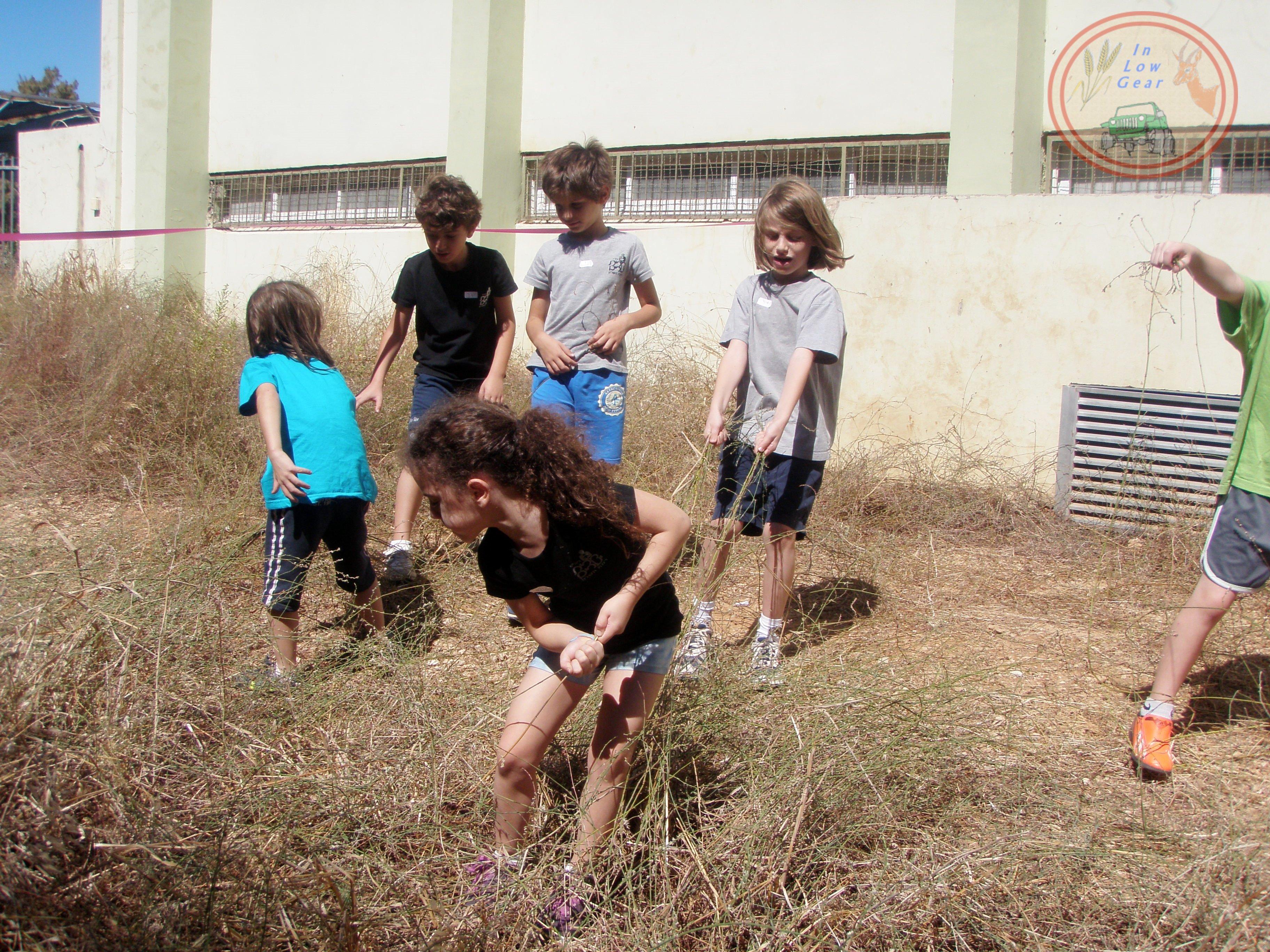 פרמקלצ'ר לילדים: מקבלים את תחושת האדמה והעשבייה