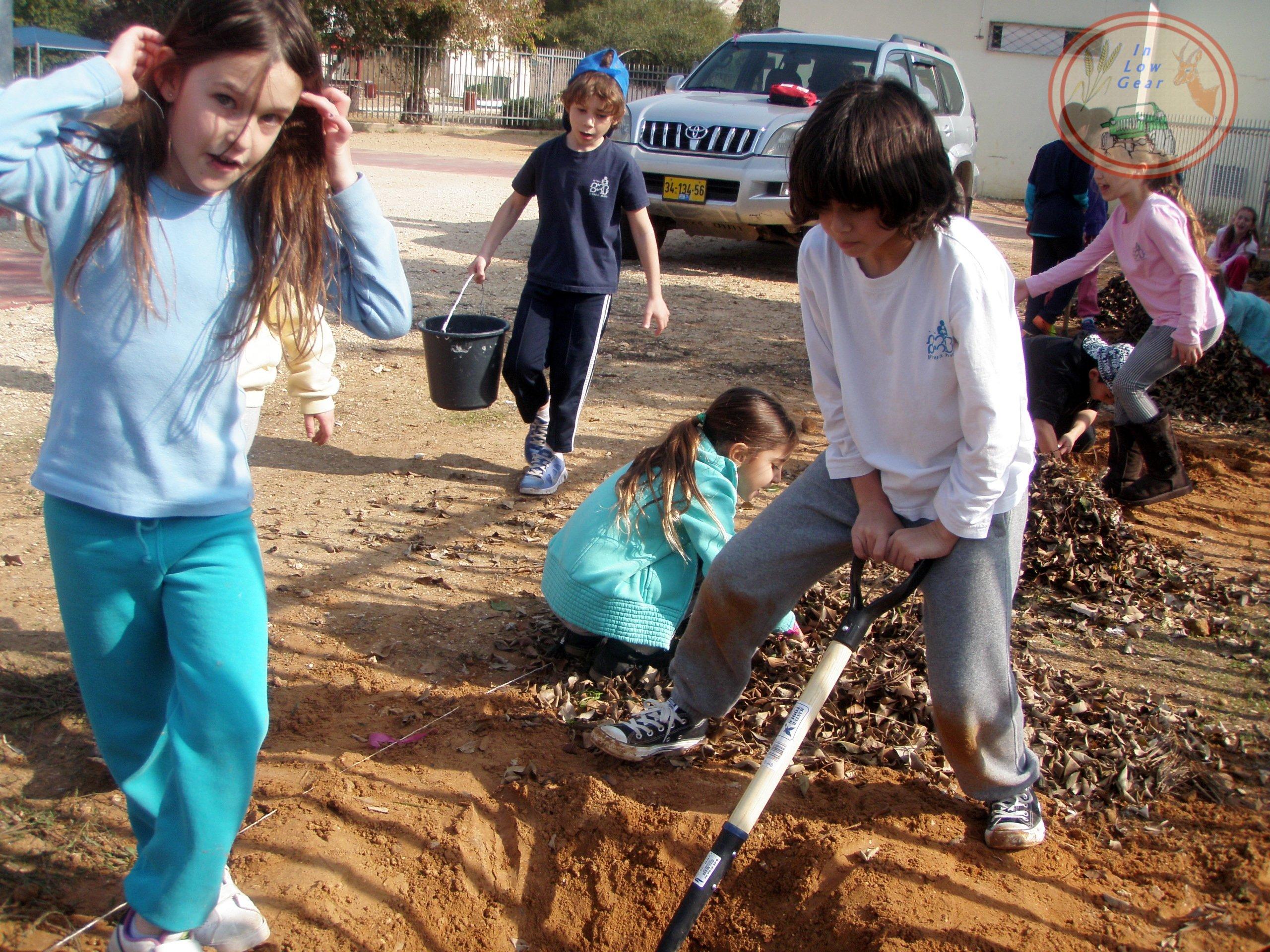 פרמקלצ'ר לילדים: חגיגת הנטיעות