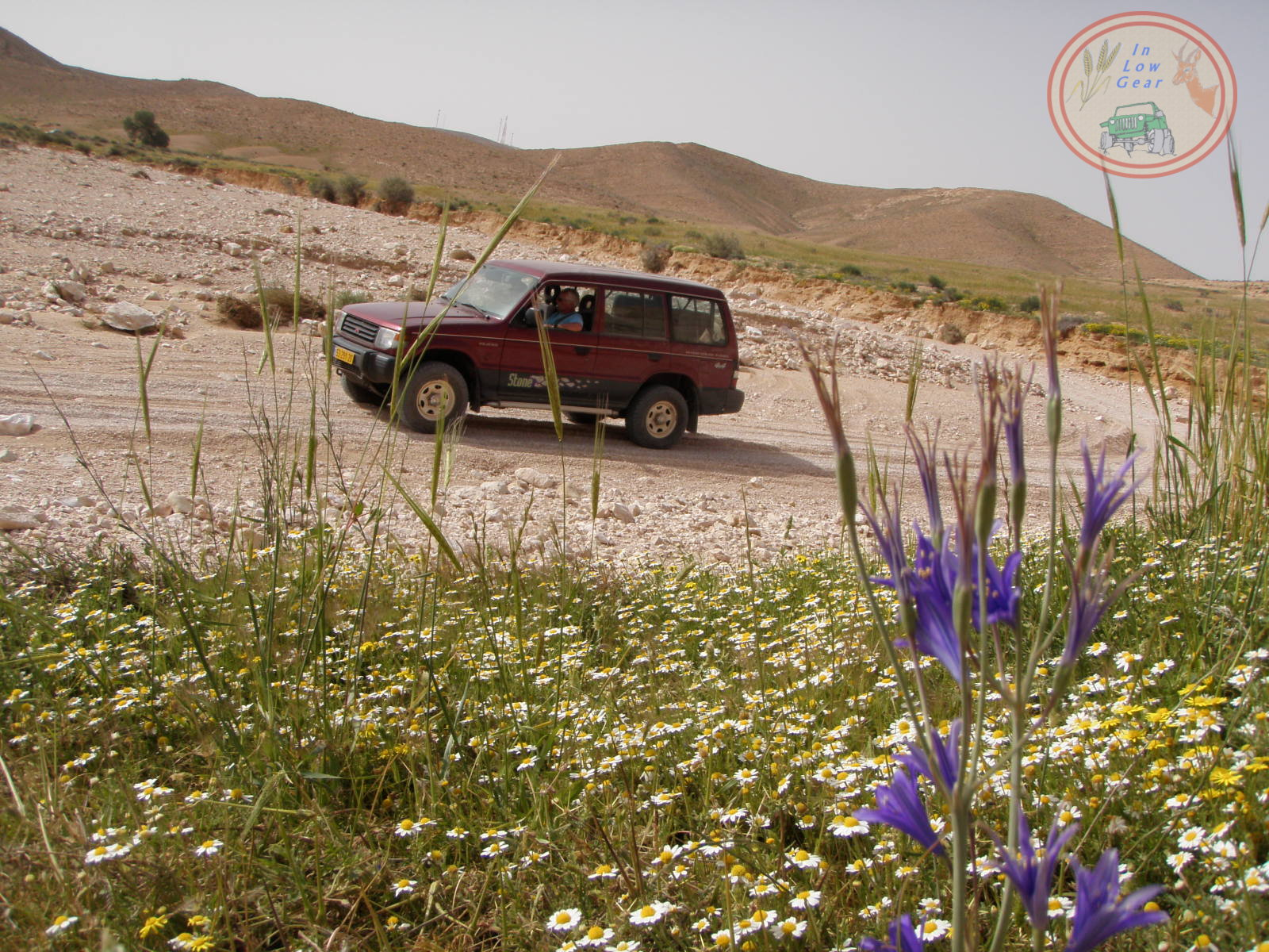 Nahal Lots in spring 4x4 jeep tours